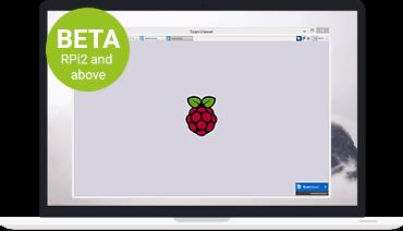 TeamViewer Host는 무인 원격 액세스를 지원합니다.