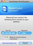 TeamViewer 6 QuickSupport